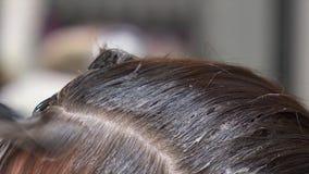 Aplicación del tinte al primer femenino oscuro del pelo almacen de video