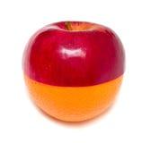 aplle πορτοκαλιά στάση Στοκ Εικόνες