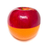 Aplle standing on orange. Concept image of section of red apple standing on section of ripe orange. Isolated Stock Images