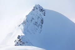 apls κορυφή Στοκ Εικόνες