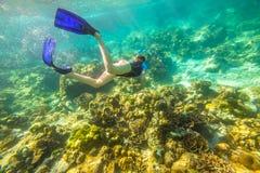 Apnea en mer tropicale Images libres de droits