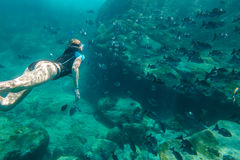 Apnea in tropical sea. Female apnea swims in deep waters of the popular Similan Islands in Thailand, Andaman Sea. On background a lot of fish Royalty Free Stock Photography