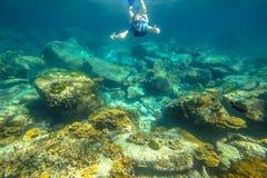 Apnea in tropical sea. Female apnea swims in tropical turquoise sea of Racha Noi, Phuket in Thailand Royalty Free Stock Images