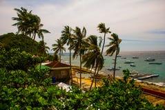 Apo-ö, Filippinerna, sikt på östrandlinje Palmträd, hav och fartyg Arkivbild