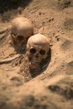 Apocalypsenkonzeptschädel und Knochen abstrarct Hintergrund Stockfotografie