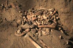 Apocalypsenkonzeptschädel und Knochen abstrarct Hintergrund Lizenzfreies Stockbild