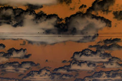 Apocalyptic Sky. This is apocalyptic sky with birds on the wire Royalty Free Stock Photography