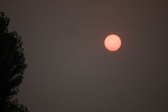 Apocalyptic sun in a dismally smoky gray sky Stock Images