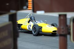 Apogée jaune d'Emeryoson F1 photo stock