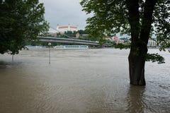 Apogeo en el río Danubio en Eslovaquia Fotografía de archivo