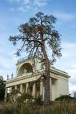 Apollo świątynia z wysokim drzewem Obraz Royalty Free