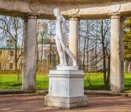 Apollo Belvedere fotografie stock