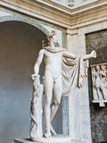 Apollo Belvedere statue. Royalty Free Stock Photography