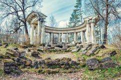 Apollo kolumnada w Pavlovsk parku zdjęcie royalty free