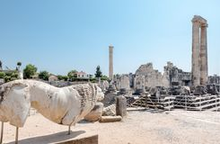 Apollo Temple på Didyma i Didim, Aydin, Turkiet royaltyfria bilder