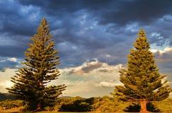 Apollo zatoka, Wiktoria, Australia Obraz Royalty Free
