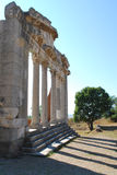 Apollonia Parthenon, Albania Stock Photos