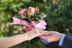 Apology with a bouquet of flowers Royalty Free Stock Image