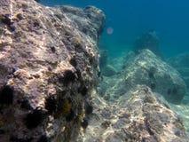 Aponissos海滩的水下的海平面照片,Agistri海岛,萨龙湾,Attica,希腊 免版税库存照片