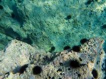 Aponissos海滩的水下的海平面照片,Agistri海岛,萨龙湾,Attica,希腊 免版税图库摄影