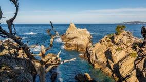 Aponte o parque estadual de Lobos em Califórnia, litoral da ilha rochosa na luz da manhã imagem de stock royalty free