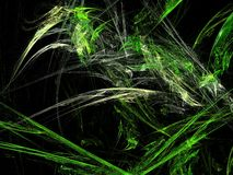 Apophysis Royalty Free Stock Photo