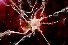 Apoptosis av neuronen som observeras i olika sjukdomar arkivfoton