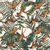 Apor på rankor på den tropiska sidabakgrunden stock illustrationer