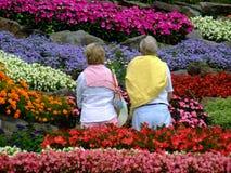 Aposentado no jardim Foto de Stock Royalty Free