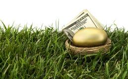 Aposentadoria do ovo de ninho fotografia de stock