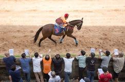 Aposta do jogo da corrida de cavalos Foto de Stock