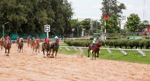 Aposta do jogo da corrida de cavalos Imagens de Stock