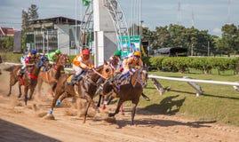 Aposta do jogo da corrida de cavalos Imagens de Stock Royalty Free
