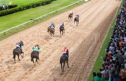 Aposta do jogo da corrida de cavalos Fotos de Stock Royalty Free