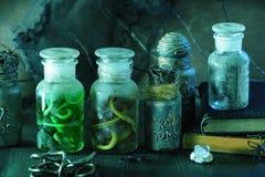 Apothecary ведьмы раздражает украшение хеллоуина волшебных зелиь Стоковая Фотография RF