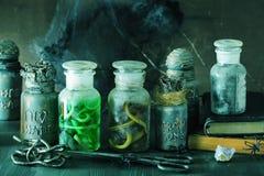 Apothecary ведьмы раздражает украшение хеллоуина волшебных зелиь Стоковые Изображения