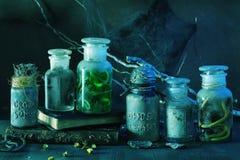Apothecary ведьмы раздражает украшение хеллоуина волшебных зелиь Стоковое Фото