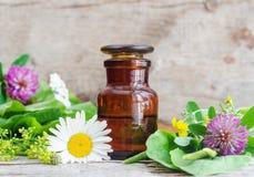 Apothekerflasche und verschiedene heilende Kräuter und Blumen Getrennt auf Weiß Lizenzfreie Stockfotos