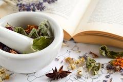 Apothicaire naturel avec les herbes et le livre Images stock