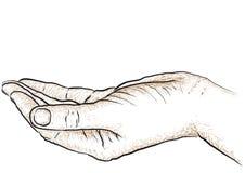 Apoyo de la mano Imagen de archivo libre de regalías