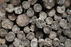 Apoyos de hoyo de madera imagen de archivo libre de regalías