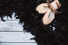 Apoyos del ballet del cisne negro Fotos de archivo libres de regalías