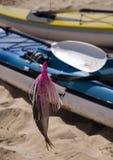 Appât vivant avec le kayak Photos libres de droits