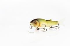 Appâts et vitesse pour les poissons prédateurs contagieux Photo libre de droits