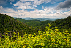 Appalachen-Sommer Asheville Nord-Carolina Blue Ridge Lizenzfreies Stockbild
