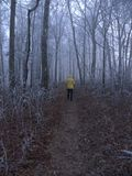 Appalachian ślad--Hogpen Gap, Gruzja zdjęcia royalty free