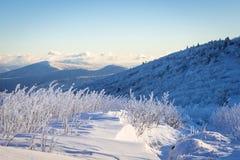 Appalachian ślad zimy podwyżka obrazy royalty free