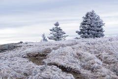 Appalachian ślad zimy podwyżka obrazy stock