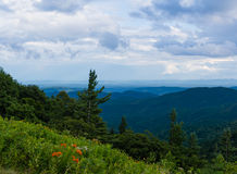 Appalachian bergen Stock Afbeeldingen