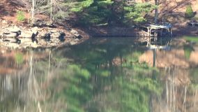 Appalachian cliff, Pine Trees, lake reflections green, brown, tan stock footage